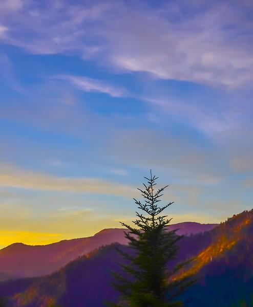 Smoky Mountains 47