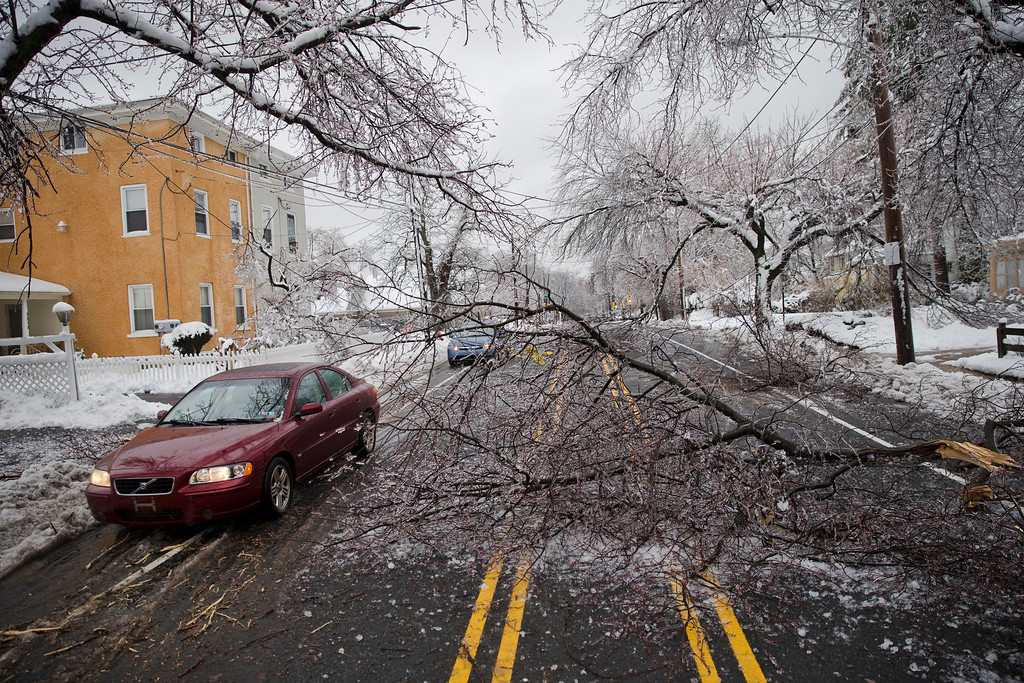 . Cars drive around a downed limb after a winter storm Wednesday, Feb. 5, 2014, in Philadelphia. Icy conditions have knocked out power to more than 200,000 electric customers in southeastern Pennsylvania and prompted school and legislative delays as well as speed reductions on major roadways.  (AP Photo/Matt Rourke)