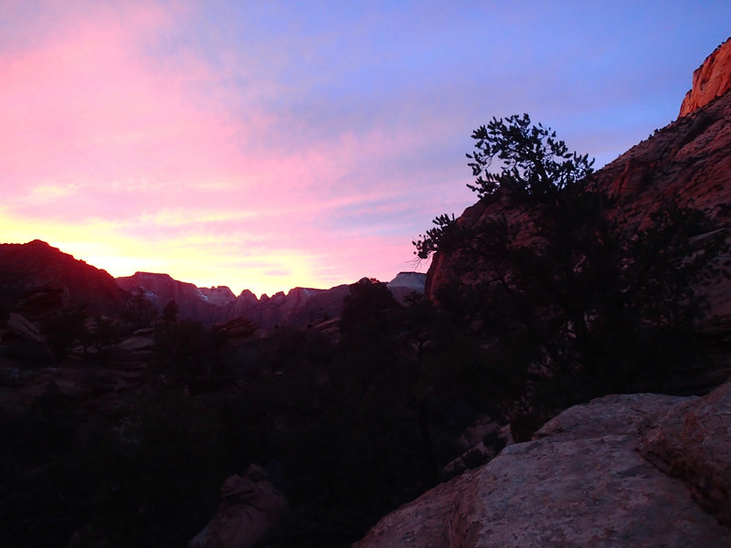 Zion National Park - Ashley 17.JPG