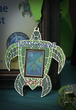 Turtle Krawl, 2013
