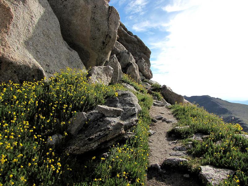 Mt Evans 7-25-2010 (134).jpg
