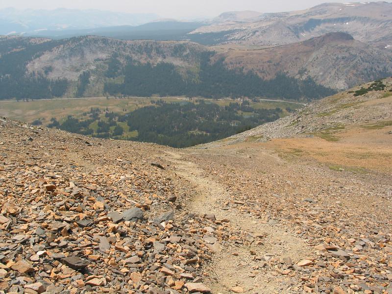 Mount Dana (50).jpg