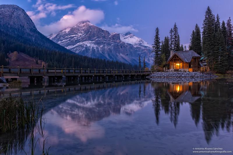 La casa del lago / The lake house