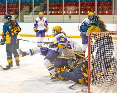 Women's Hockey - Queen's vs. Laurier 20090305