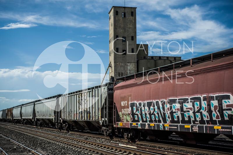 wf_train_7.jpg