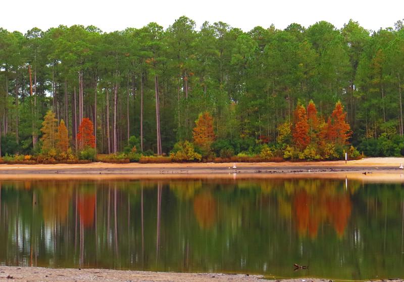 Laura S. Walker State Park, Georgia (8).JPG