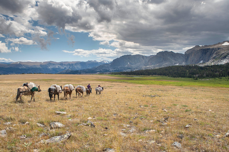 A Pack Trip along Wyoming's Continental Divide