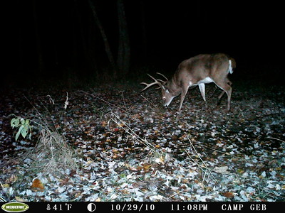 '10 Hunting