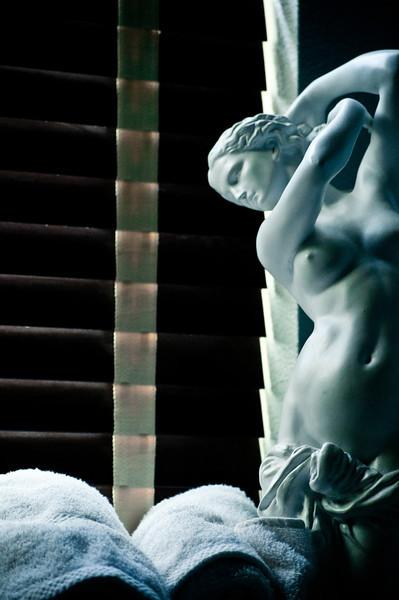 La Toilette de Vénus.jpg