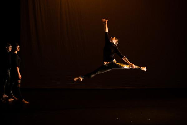 Seattle International Dance Festival