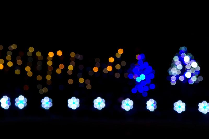 Christmas lights in San Ramon