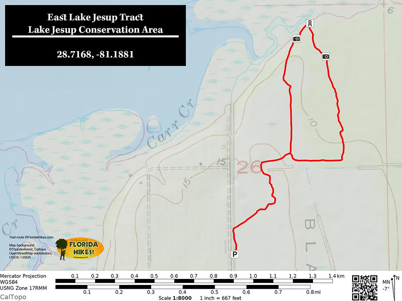 Lake Jesup East Tract Trail Map