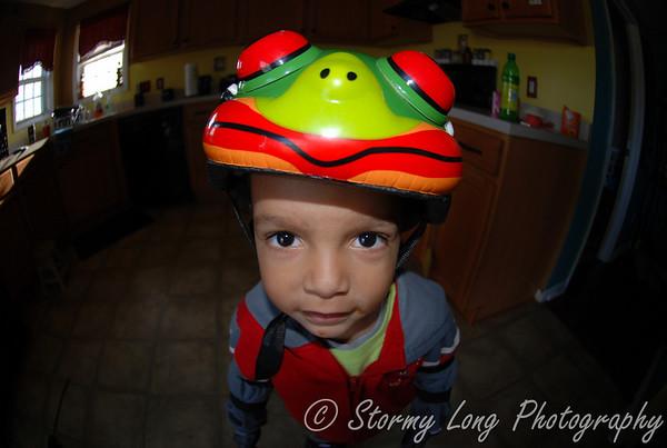 Little Frog Rider