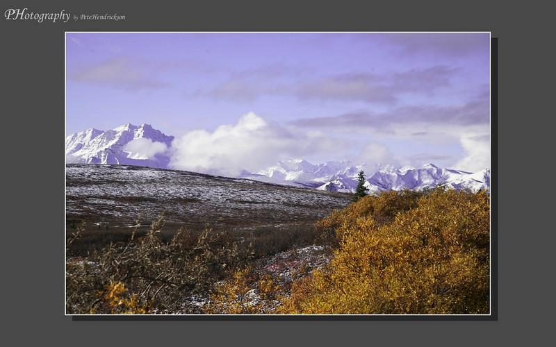 My Alaska 12-08-049.jpg