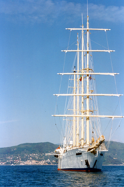 SF  at Sail 3-.png
