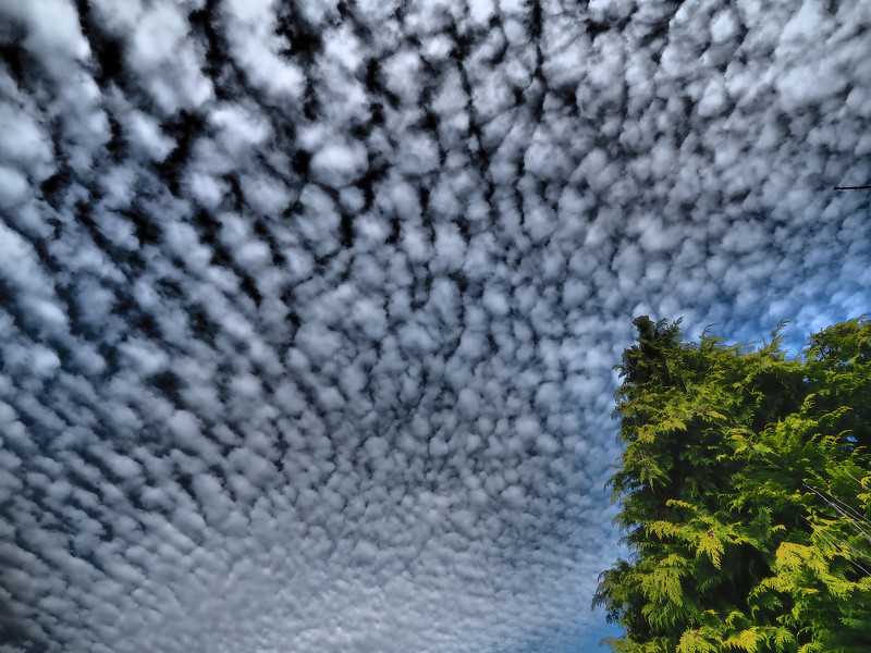 Incredible Mackerel Sky