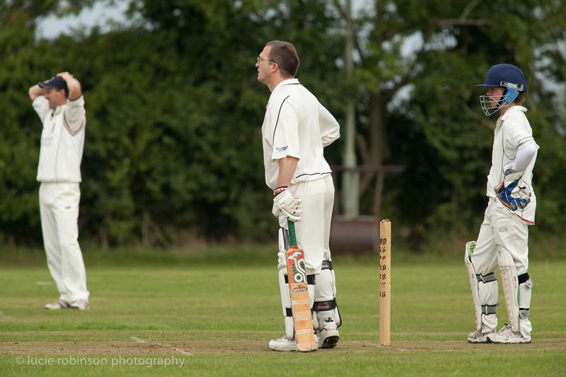 110820 - cricket - 255.jpg