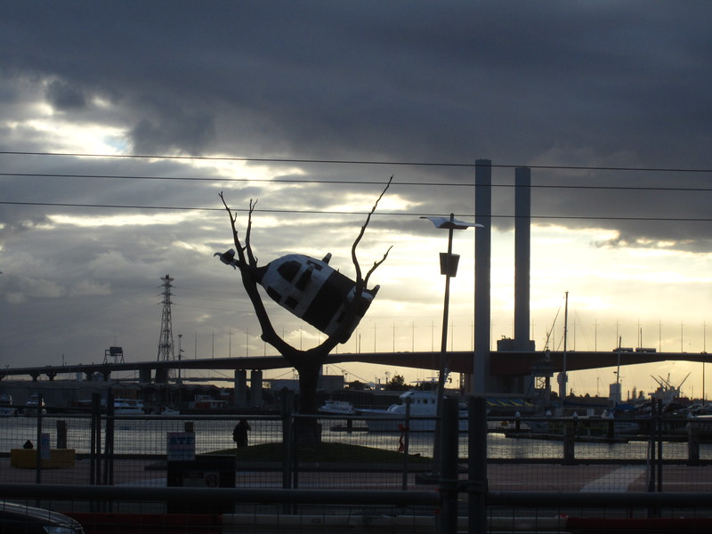 Melbourne - Around the City-377.JPG