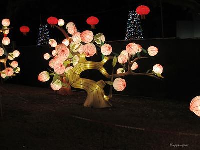 Chinese Lantern Festival - December 30, 2012