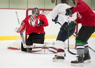 2016 Alumni Hockey game
