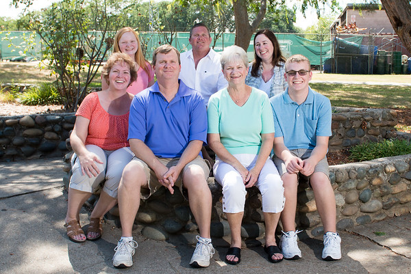 Vise Family