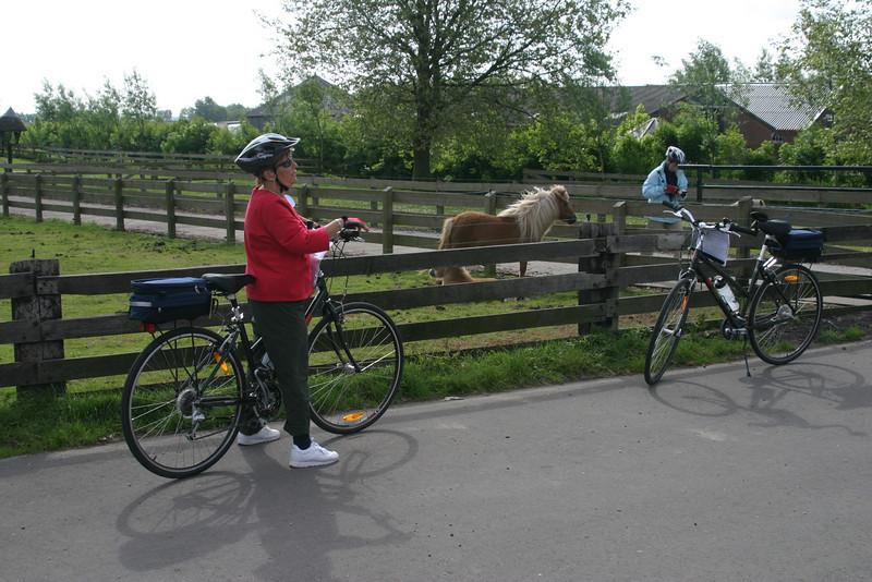 2 Biking 00040.JPG