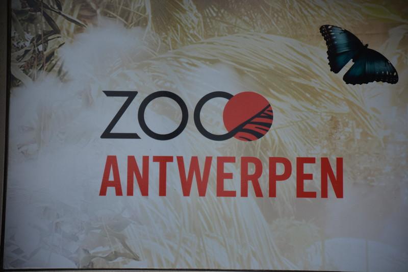 20180624 Antwerpen Zoo GVW_9512.JPG