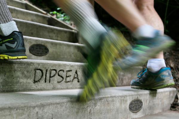 Dipsea Race 2015