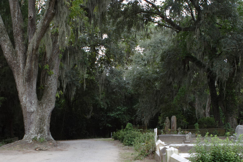 """Dark, still, quiet, creepy Bonaventure Cemetery, founded as a family plot two centuries ago about 20 minutes outside of Savannah.  This sprawling, dirt road-covered site, situated on a river, is overrun by huge, sprawling live oak trees dripping with Spanish moss, creating a canopy of dark green overhead.  Scene of voodoo, sex and intrigue in _Midnight in the Garden of Good and Evil_ and original site of the iconic """"Bird Girl"""" statue that adorns the cover of that book.  Many plots here have statues portraying those buried within the mostly above-ground sarcophaguses.  Governors, generals, philanthropists and 'lesser' souls as well are buried here.  Today, it's said by those so inclined that you can hear--but not see--the cemetery's 'ghost dogs' howling, barking, prowling and panting here late at night.  © Shams Tarek (www.shamstarek.com)"""
