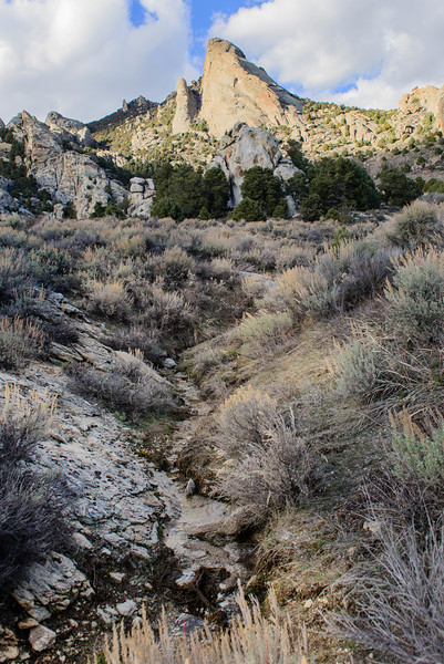 City of Rocks-669-53.jpg