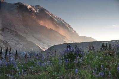 Mt Rainier 8/01/09