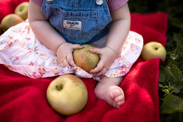 Mia! | The Little Farmer Family Session