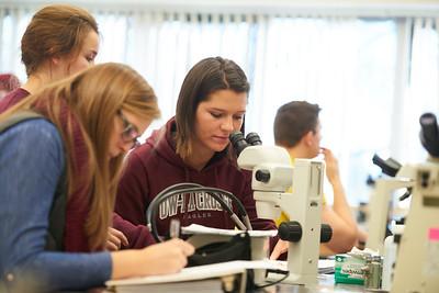 2016 UWL Biology Marsh Snails Lab