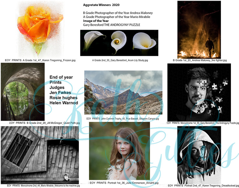 12enofy prints copy.jpg