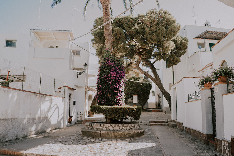 Tu-Nguyen-Destination-Wedding-Capri-Elopement-171.jpg