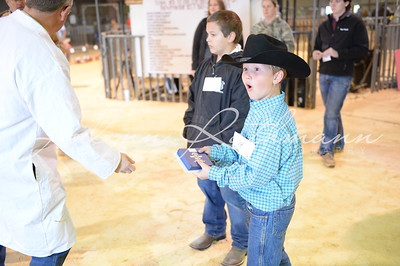 2016 Williamson County Youth Expo