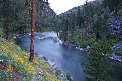 M.F. Salmon River - Middle Canyon