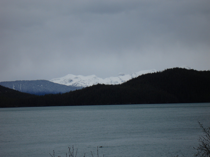 Alaska 2008 051.jpg