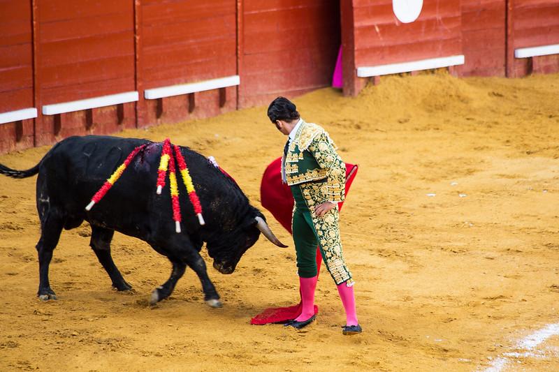 Bullfight9.jpg