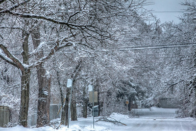 2013 After The Ice storm
