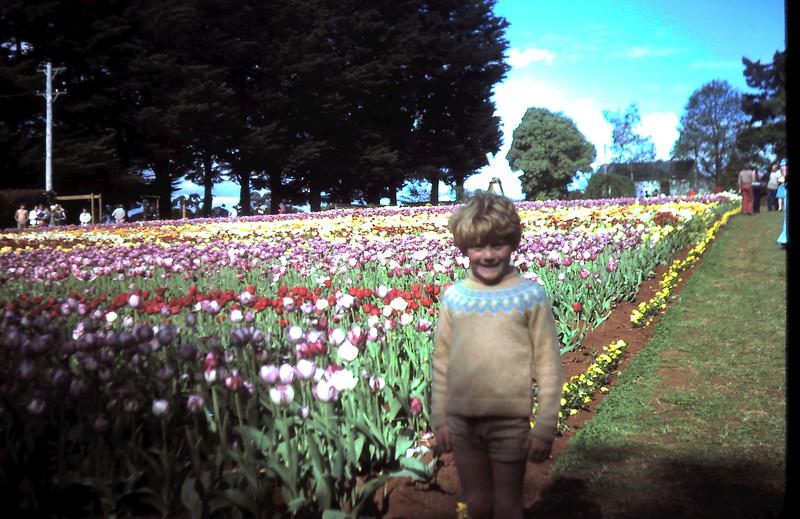 1977-10-11 (1) Allen 6 yrs @ tulip farm.JPG