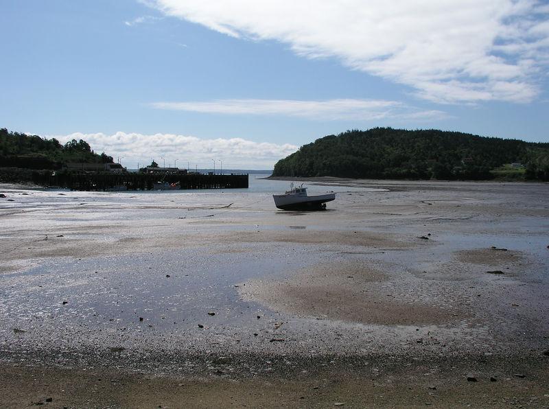 Maine2005 009.JPG