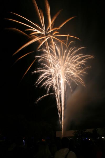 2007_1102putneyfireworks135.JPG