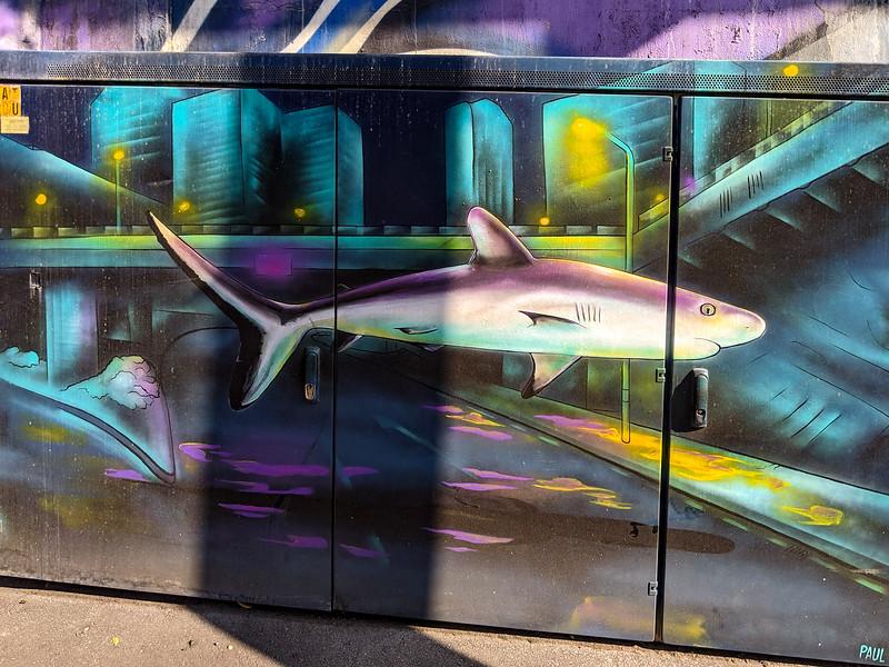 Cool public art on a transformer box.