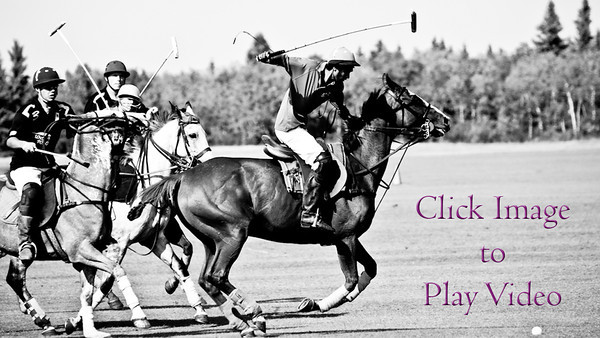 VIDEO ~ Springfield Polo Club Fall Tournament-Public Gallery