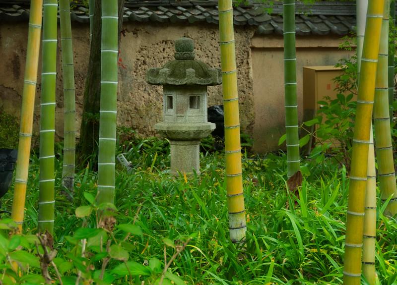 20081110_042_Upload.jpg
