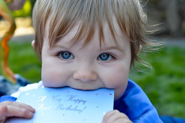 Winston's 1st Birthday