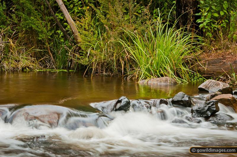 Yea River at Murrundindi