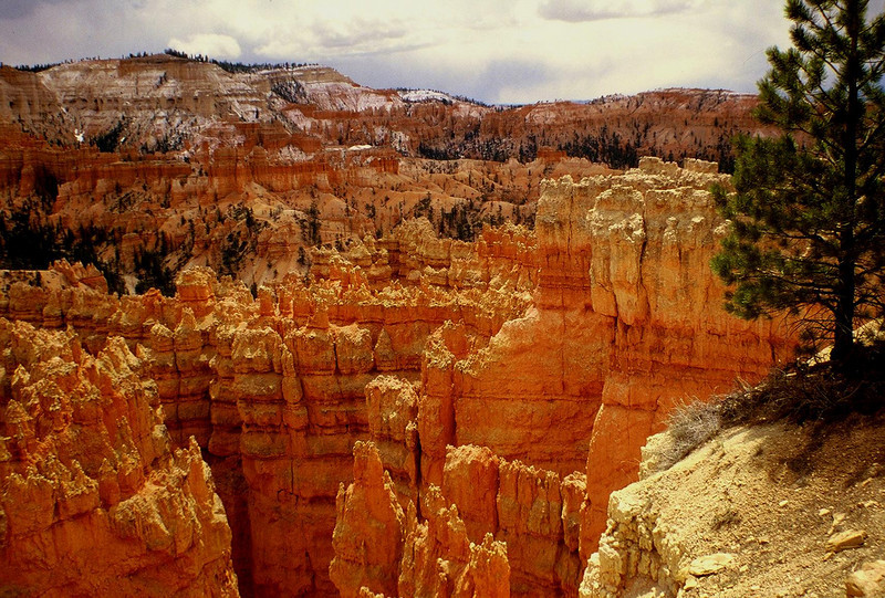 NEW Bryce Canyon A, 1980.JPG