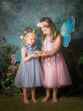 The Fairy Experience - St Boswells - October 2017